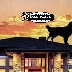 What a Dog on a Roof Can Teach Us All About Roof Safety | realtor …