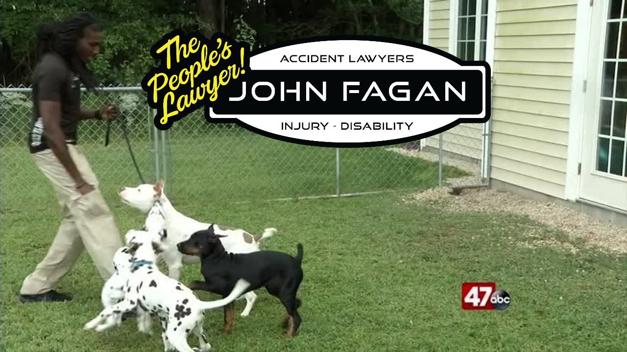 Preventing Dog Attacks