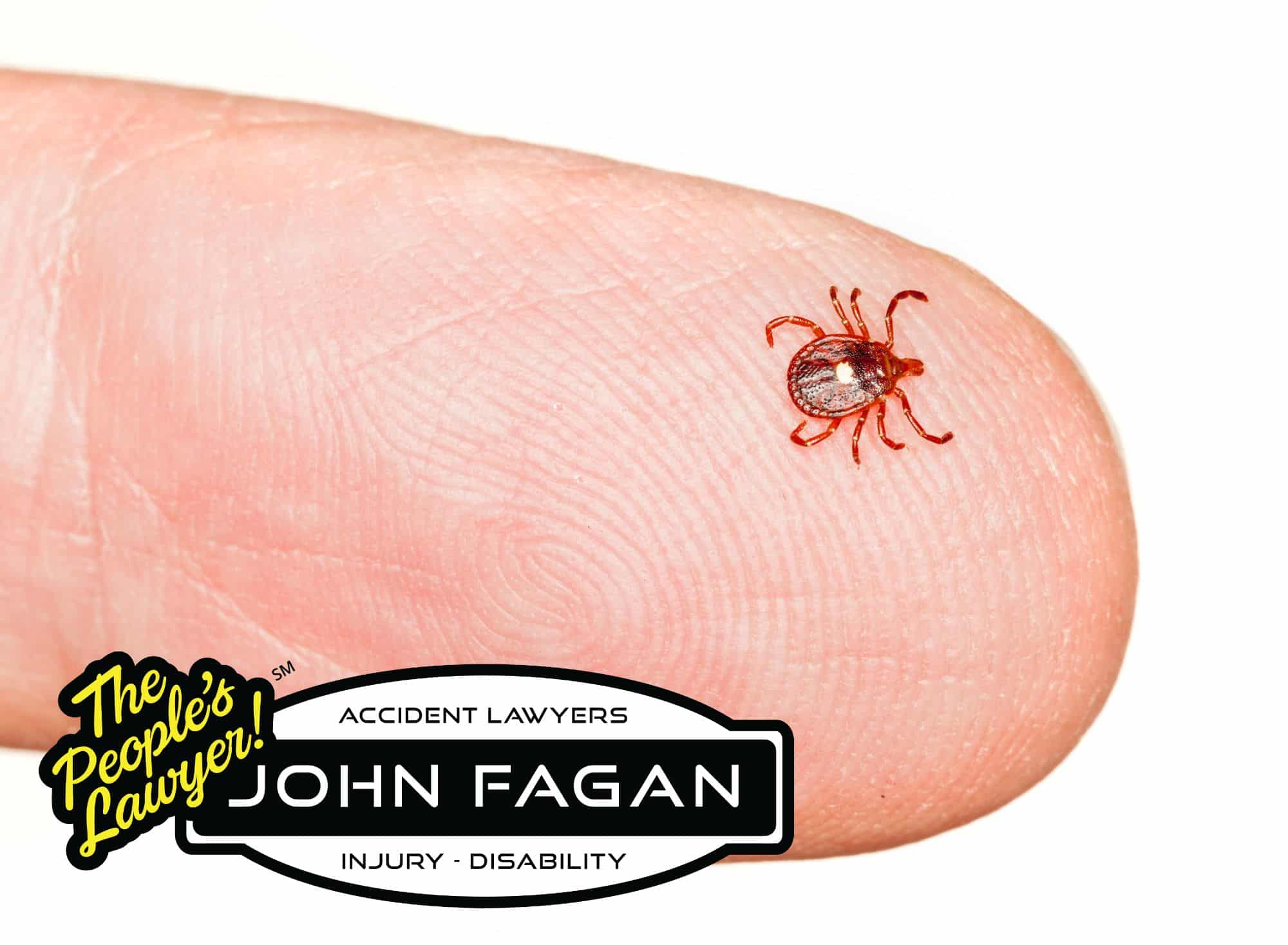 Lone Star Tick Bites That Can Trigger Lifelong Allergies to Red Meat, Dairy On the Rise