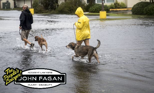 Pet Safety Before, During and After Florence and Other Natural Disasters